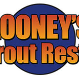 Looney's Tile and Grout
