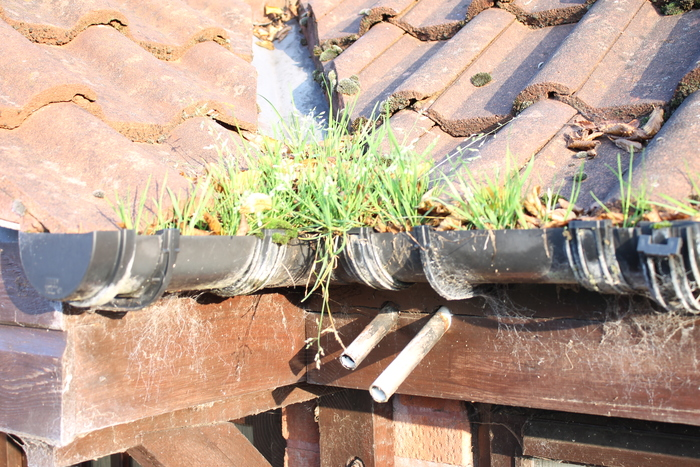 Profile Photos of All Seasons Gutter Cleaning 56 River Leys Swindon Village - Photo 2 of 5