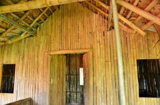 wayanad jungle tree house near muthanga forest .best place to stay in wayand