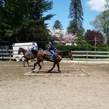 Profile Photos of The Riding Stable LLC