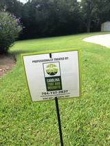 Carolina Turf and Mosquito, LLC 8022 Providence Rd. Ste 500-238
