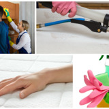 Maid Solution Services Corp