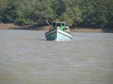 Eco tourism in India of National Parks in Odisha