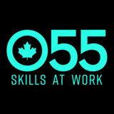 Over 55 Skills at Work