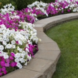 My Lawn Care & Landscaping Co. Inc