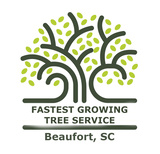 DOSS TREE SERVICE SOUTH RILEY, Raleigh