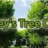 Roley's Tree Service & Landscaping - Consulting Arborist