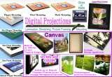 Profile Photos of Digital Projections