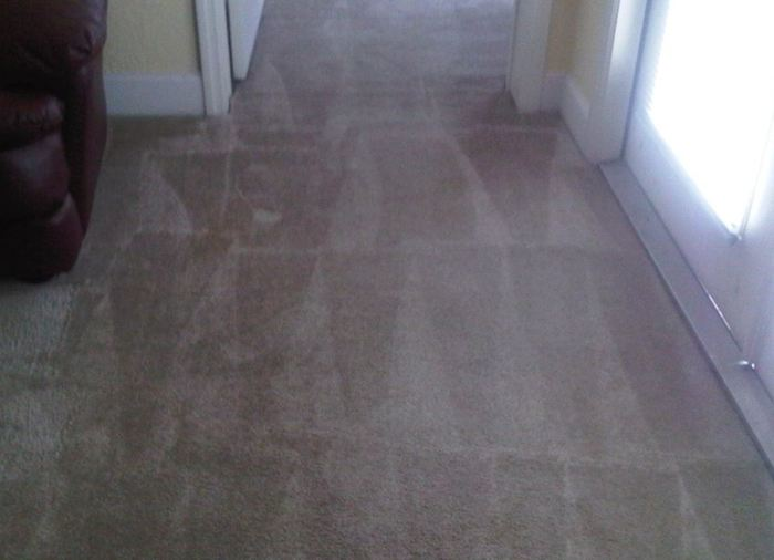 Profile Photos of Mississauga Carpet Cleaner 25 Watline Ave - Photo 3 of 4