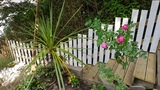 Garden Clearing and Fencing