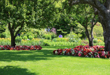 Profile Photos of Ultimate Lawn Care LLC