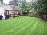 New Album of Victory Lawn Care Services