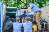 Profile Photos of EZ Yonkers Junk Removal